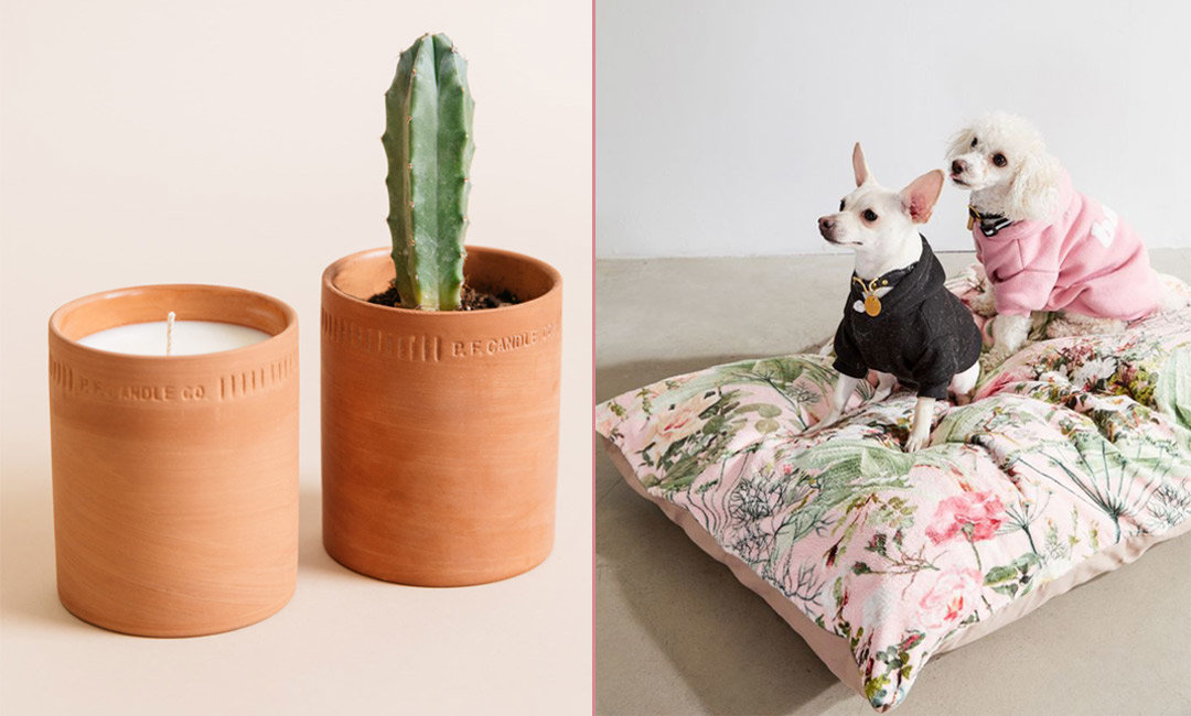Plant-Inspired Home Decor For Aspiring Green Thumbs | InStyleRooms.com/Blog